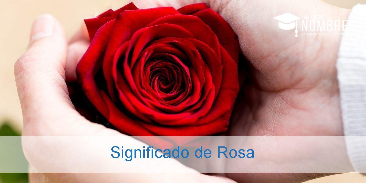 Significado de Rosa