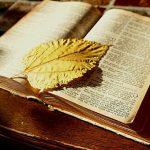 Nombres de niño bíblicos y su significado