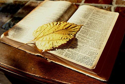 nombres de niño biblicos