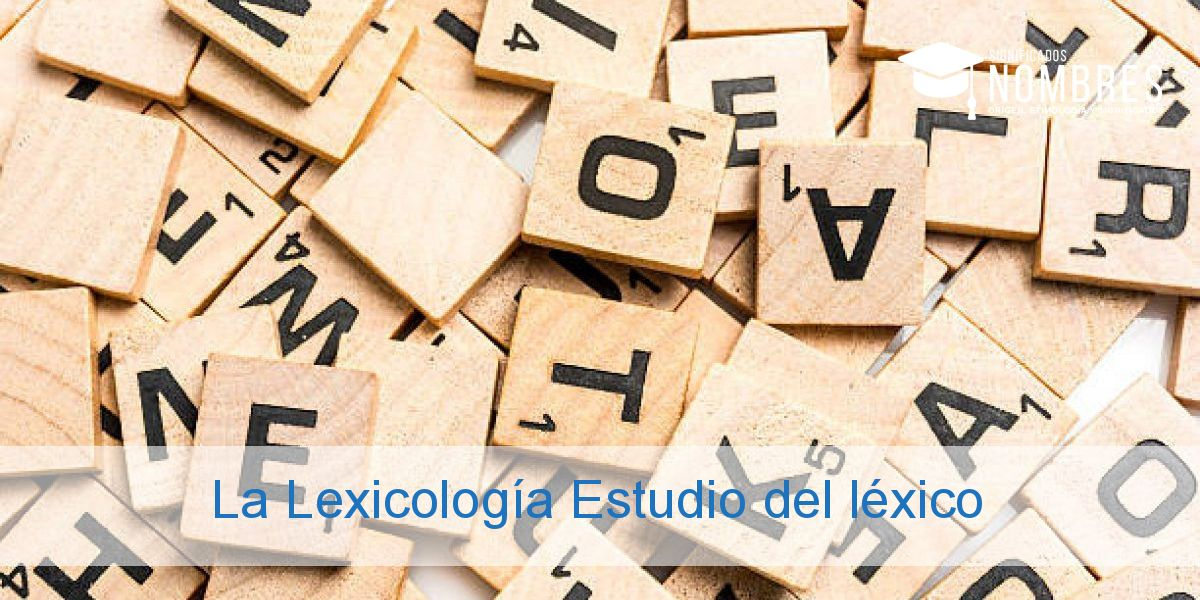 La Lexicología Estudio del léxico